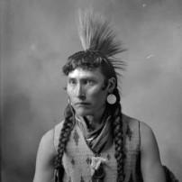 Cree Indian